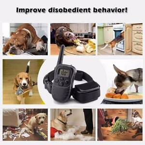 BRAND NEW 3 IN 1 PET REMOTE TRAINING ANTI BARK VIBRATION COLLAR Camden Park West Torrens Area Preview