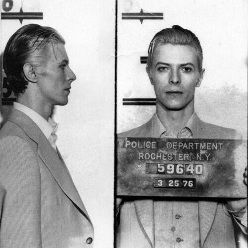 David Bowie Arrest Mug Shot High quality Photo Reproduction