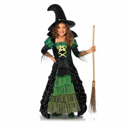 Storybook Costumes For Girls (Girls Storybook Witch Dress)