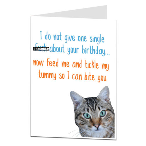 Funny Happy Birthday Card From Cat Theme Joke Rude Humour For Owner Lover Lady