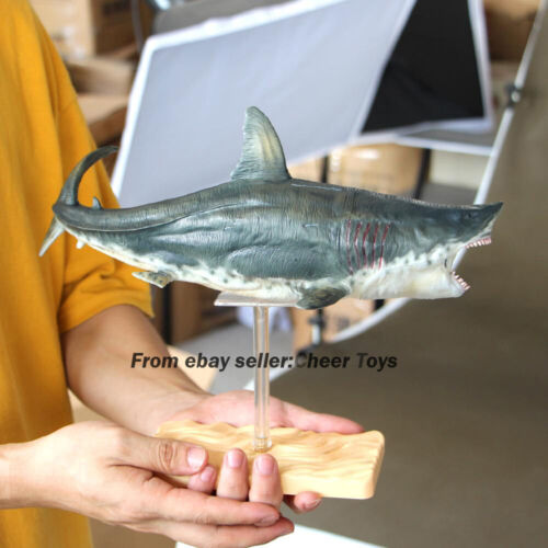 PNSO Megalodon Vinyl Model Painted Shark Statue 32cmL In Box Collection Limited