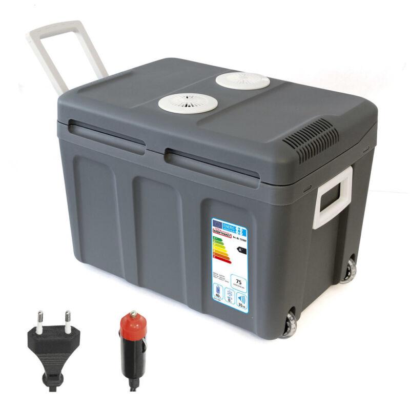 40L Kühlbox 12V 230V Mini-Kühlschrank + Rollen Thermoelektrische Warmhaltebox
