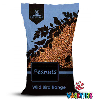 Peanuts 12.5 kg Hutton Mill / Wild Bird / Food / Feed / (HMI036)