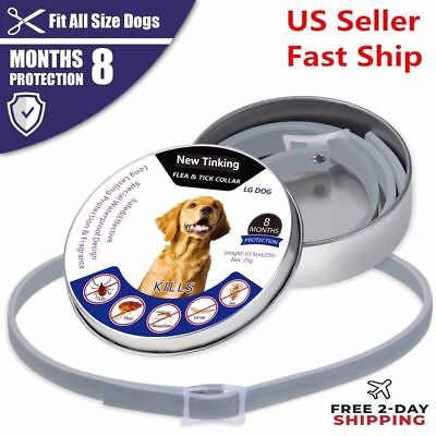 63cm Dewel Anti Flea and Tick Collar for Small Large Dogs 8 Month Protection US