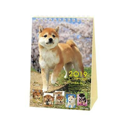 Shiba Inu Desktop Calendar 2019 with Adorable Shiba Pictures English US Holidays
