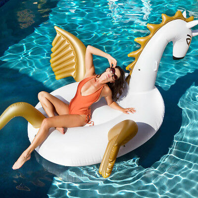 Inflatable Toys For Adults (Inflatable Pool floats for Adults and Kids with Outdoor Swimming Pool Party)