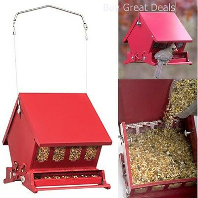 Best Bird Feeder Squirrel Wild Proof Hanging Pet Seed Garden Home