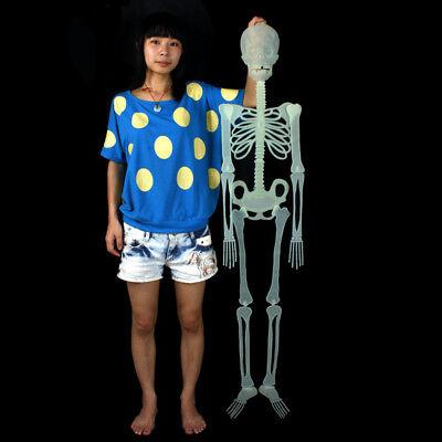 Glowing Skeleton - 59