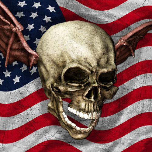 Avenged Sevenfold Critical Acclaim SINGLE 12x12 Album Cover Replica Poster
