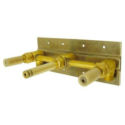 Danze 2-Handle Wall Mount Rough-In Valve with Mounting Plate in Rough Brass ()
