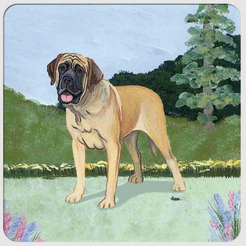 Mastiff Coasters - Set of 4