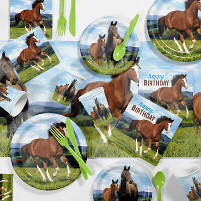 Wild Horse Birthday Party Supplies Kit - Horse Birthday