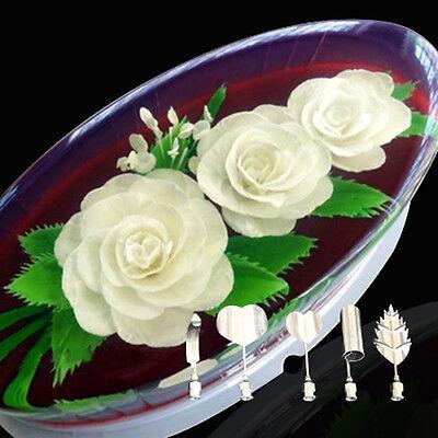 5Pc Set Flower 3D Jello Jelly Art Needle Tools Jelly Cake Gelatin Pudding Nozzle
