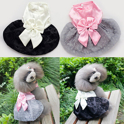 Summer Cute Pet Dog Dress Floral Puppy Wedding Party Lace Skirt PrincessClothes