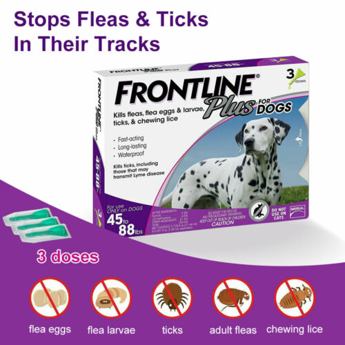 Frontline Plus Flea and Tick Treatment for Dogs 45-88 lbs. ( 3-Dose)