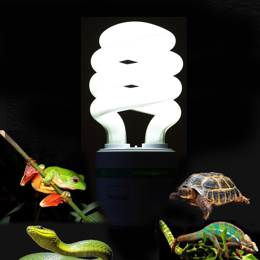 5 0 uvb 13w reptile light bulb uv lamp for vivarium. Black Bedroom Furniture Sets. Home Design Ideas