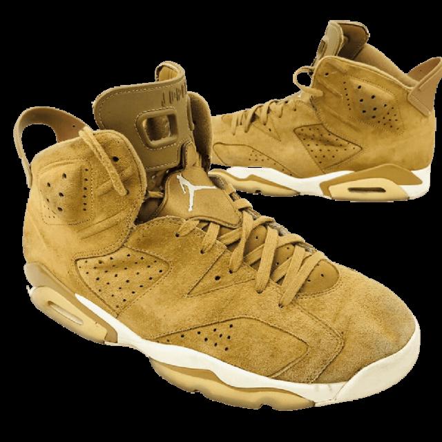 Air Jordan 6 Sneaker