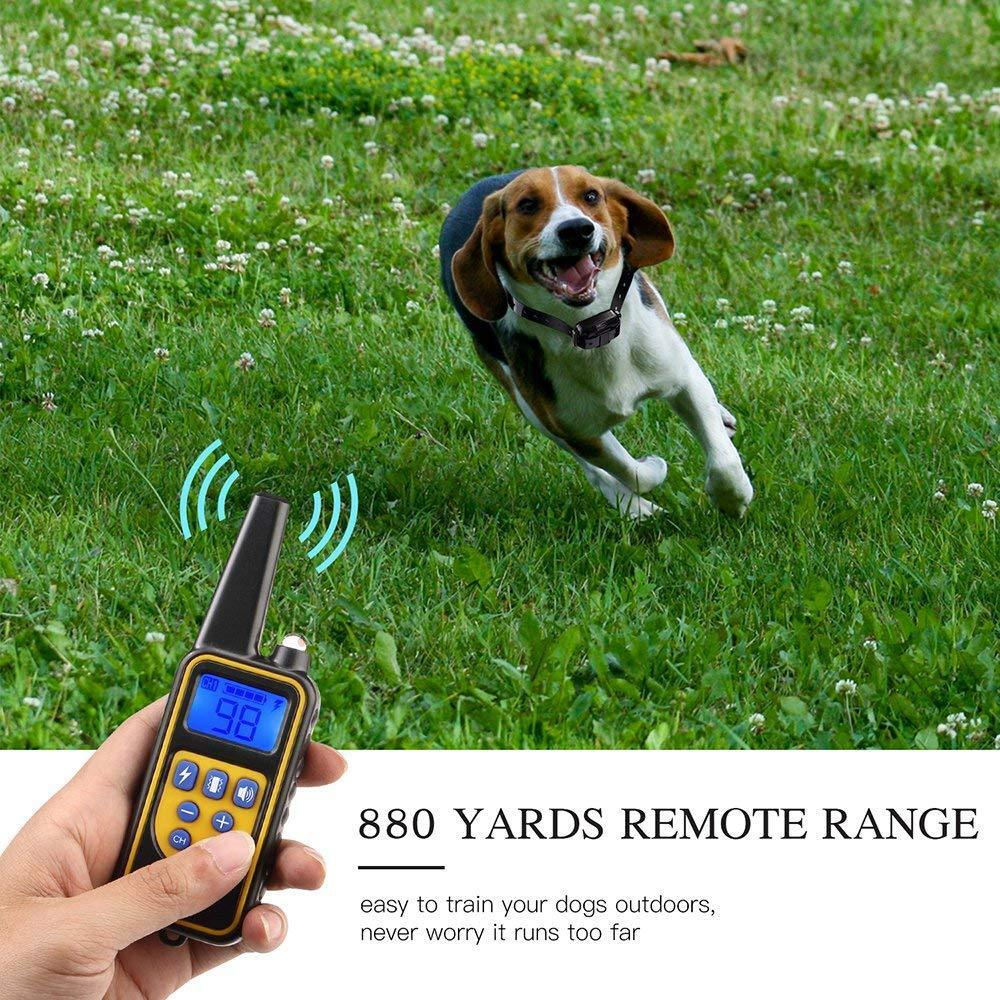 Waterproof Dog Training Electric Collar Rechargeable Remote Control 875 Yards 4