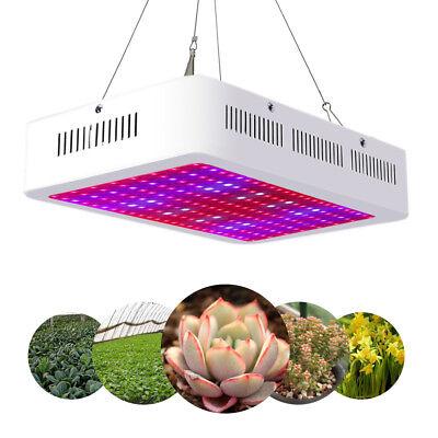 2000W LED Plant Grow Light Full Spectrum Lamp Indoor Greenhouse Veg & Flower Hot