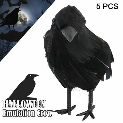 5pcs Halloween Decor Prop Black Raven Crow Bird Haunted Spooky Realistic Looking - Raven Decor