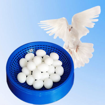 Pigeon Plastic Bird Nesting Bowl loft Breeding Eggs Basin Dove Nest Pot 21*5.5CM