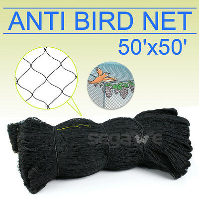 Used 50' X 50' Bird Netting Chicken Protective Net Screen Poultry Garden Aviary