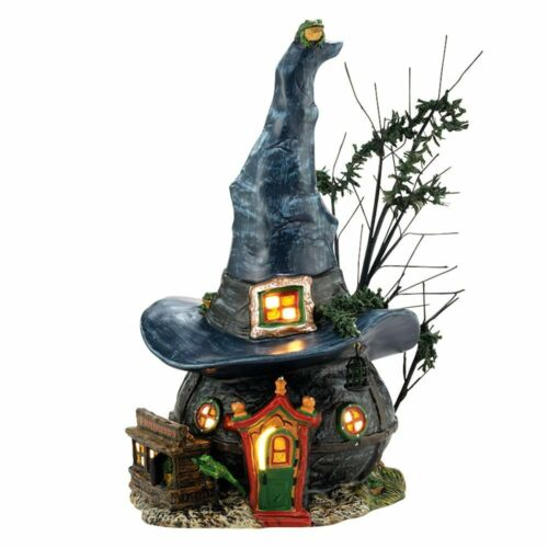 Dept 56 TOADS AND FROGS WITCHCRAFT HAUNT Halloween Village 4036591 NEW N BOX