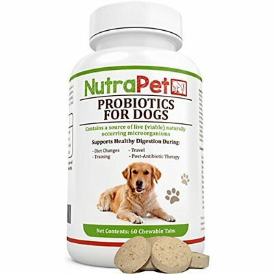 Probiotics For Dogs Chewable, Best Smelly Gas And Diarrhea Relief Plus Added (Best Tablets For Diarrhoea)