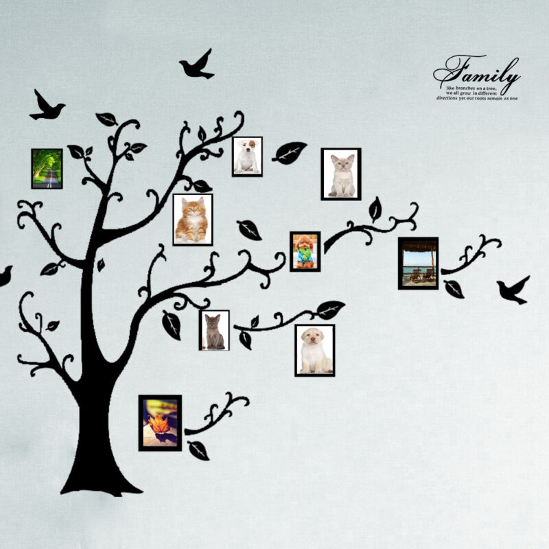 Home Decoration - Huge Family Tree Wall Stickers Birds Photo Frame Quotes Art Decals Home Decor UK