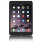 Wi-Fi + 4G iPad mini 3 Tablets & eBook Readers
