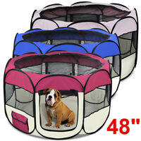 Blue Outdoor Dog Agility Training Obedience Exercise Pet