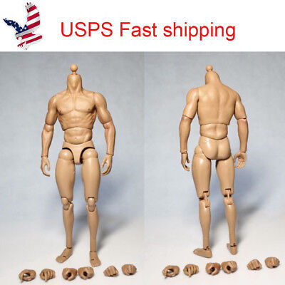 US 1/6 man Male Muscular Action Figures Body For 12