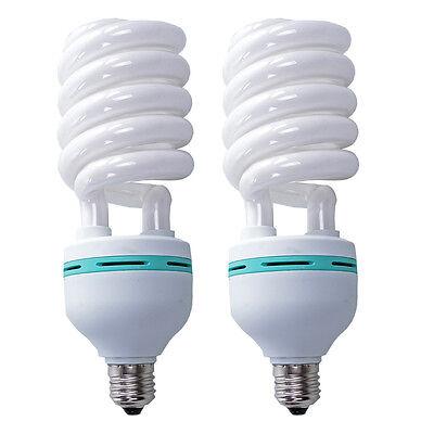 2X125W Photo Studio Light Daylight Lamp Bulb Continuous Lighting E27 220V 5500K