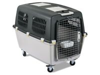 Carrier for large and medium dogs with a plastic hood and wheels, made according to IATA rules