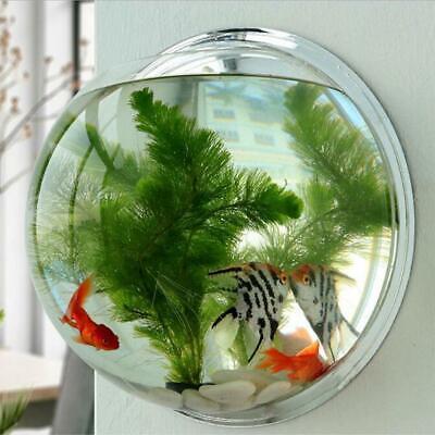 UK Wall Mounted Fish Tank Bowl Bubble Aquarium Hanging Terrarium Bowl Home Decor