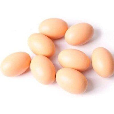 EQLEF 10pcs Home Dcor Artificial Nest Eggs Fake Food Dummy House Decor