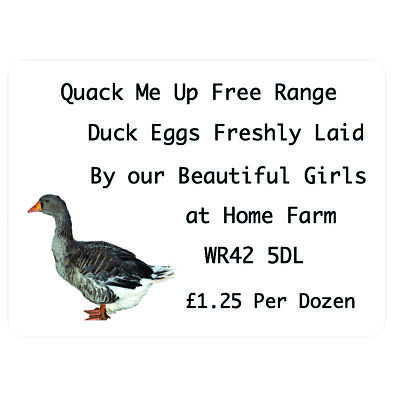 180 Duck Eggs For Sale Labels Goslings quail eggs incubator chick feed coop