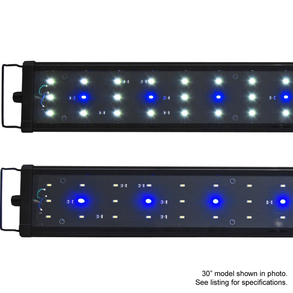 Купить Beamswork - Beamswork EA Timer 6500K LED Aquarium Light Freshwater Plant 18 24 30 36 48