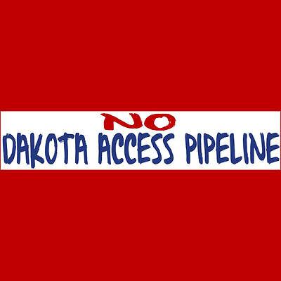 No Dakota Access Pipeline Bumper Sticker  Buy 2 Get 1 Free    No Dapl