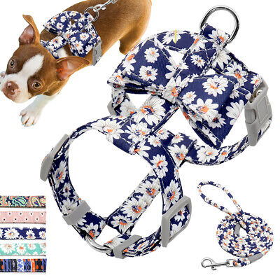 Best Dog Harnesses Leash set for Small Medium Dogs Soft Puppy Walking Vest