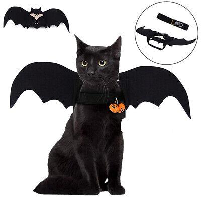 Wings Kostüm Pet Hund Bat Wings Katze Fledermaus Kostüm (Schwarzer Halloween-kostüm)