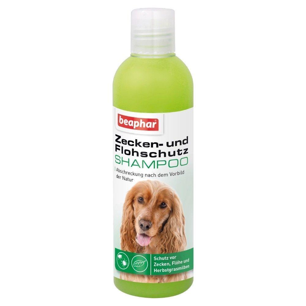250 ml Beaphar Flohshampoo gegen ZECKEN Flohschutz Shampoo für Katze o. Hund