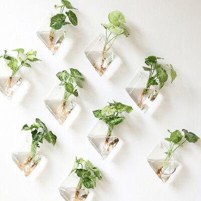 2pc Wall Hanging Plant Terrarium Glass Planter Diamond Flower Vase Pot Container (Glass Terrariums)