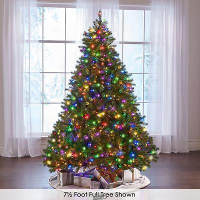 The Worlds Best Prelit 4.5 Full Douglas Fir Christmas Tree LED White light ()