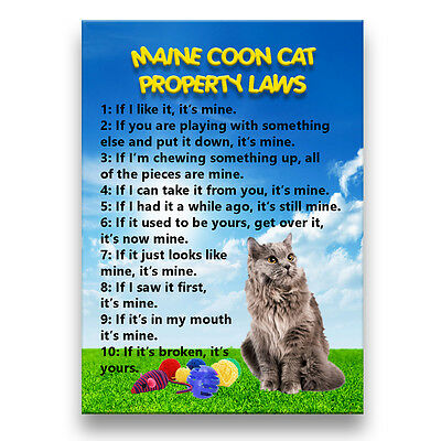 MAINE COON CAT Property Laws Fridge Magnet No 5 Funny