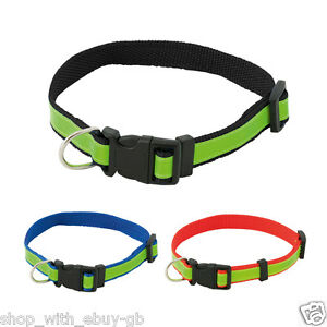 Fluorescent dog collars uk