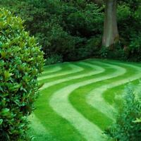 Offering Landscaping services