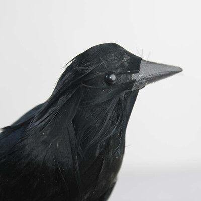 2PCS Crow Fake Bird Toys Ravens Fancy Horror Halloween Party Decoration - Crow Halloween