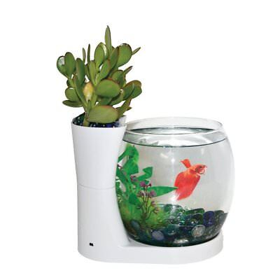 Fish Tank w/ Planter, Small 0.75 Gal Aquarium Starter Kit + Lots of extras!