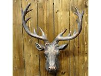Brand New still in the box, Large Bronze/Brown Stags head Stunning Resin Wall decoration.